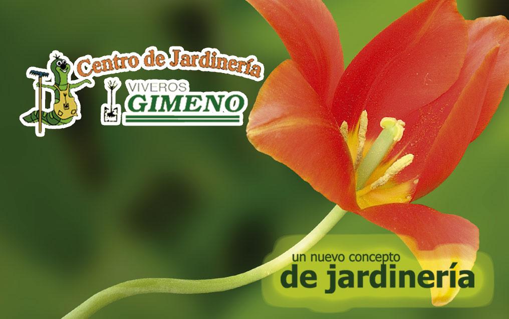 Centro de jardiner a viveros gimeno for Viveros valladolid