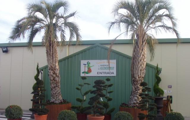 Lovely Centro De Jardinería Viveros Gimeno